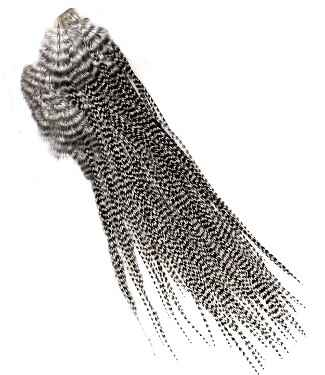 Whiting Silver Midge Saddle Hackle is available at Traditional Angler